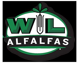 Alfalfas WL – Agvance – Mejores semillas producto de la investigación